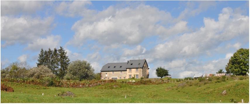 Brebis hébergement cantal gite et chambres d'hôtes Auvergne les Roches d'Artense